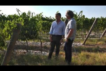 Embedded thumbnail for Antinori Solaia & Tignanello - dva supertoskanca