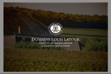 Embedded thumbnail for Predstavitev vin Louis Latour - Burgundija