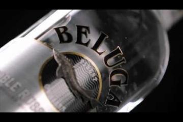 Embedded thumbnail for Novo v naši ponudbi - Vodka Beluga