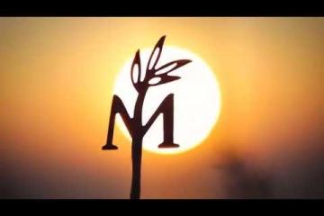 Embedded thumbnail for Gin Mare Mediteranske Inspiracije, Ibiza 2016
