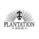 Rum Plantation